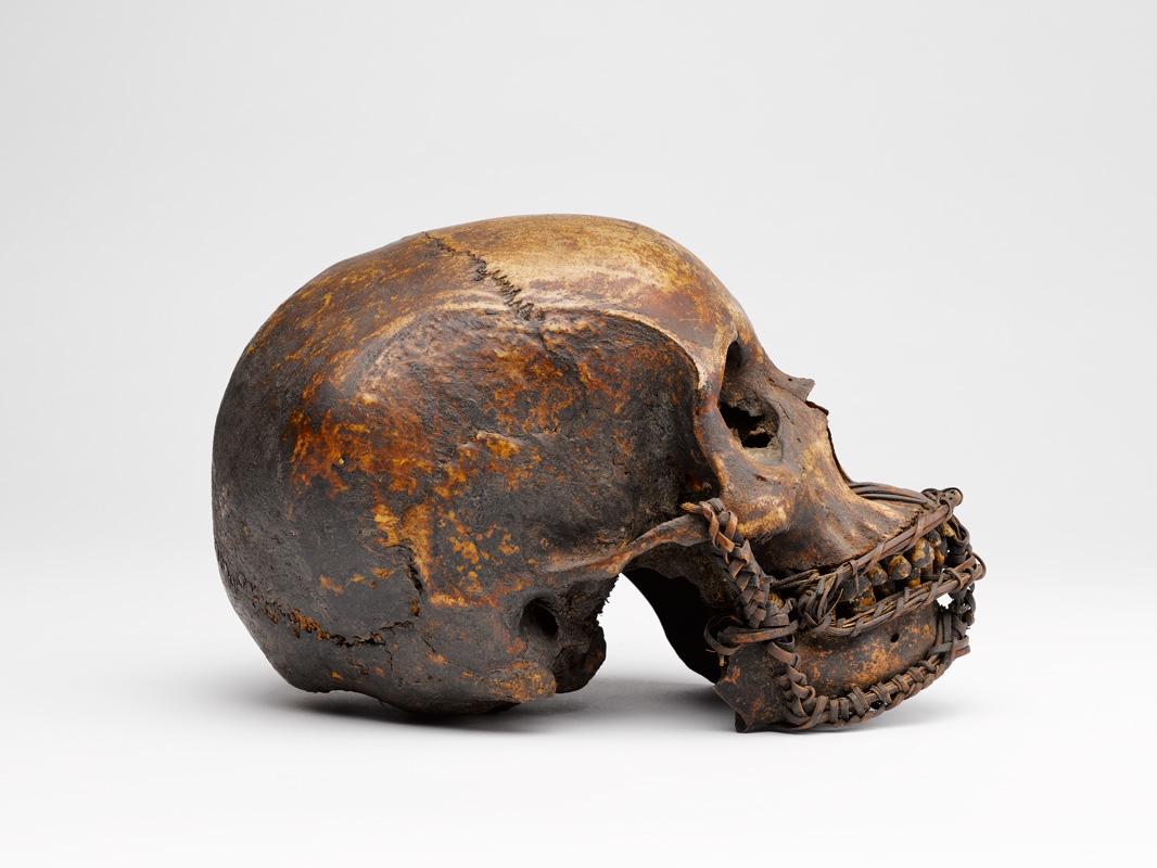 Crâne. MAAOA, Marseille.