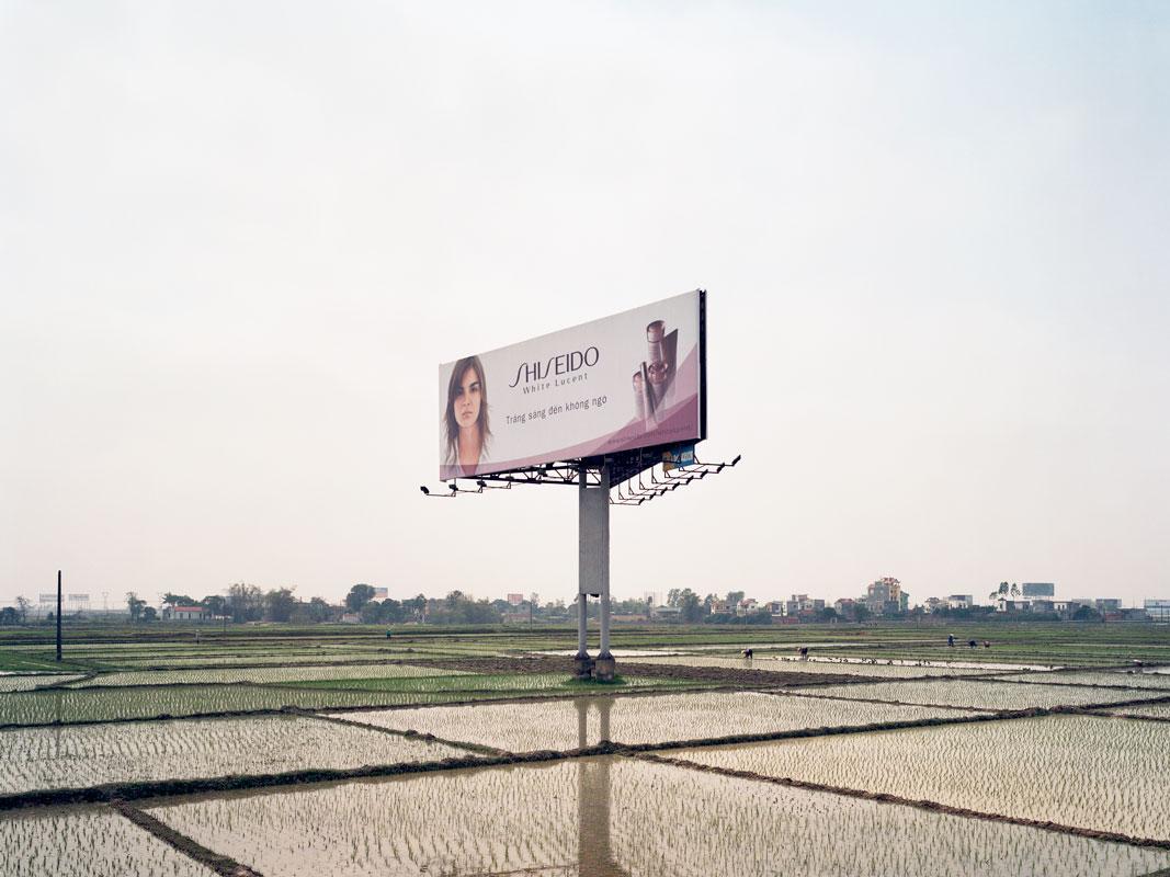 shiseido24x32